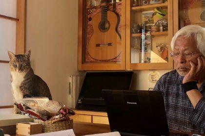 YouTubeでイーグルスを聴き直している夫
